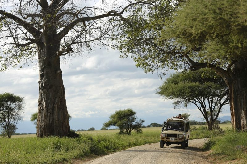 Tanzania tour package
