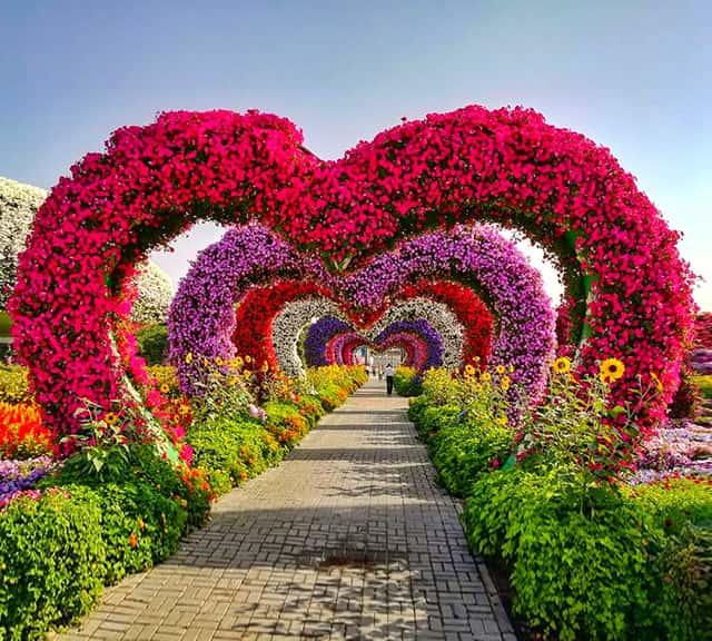 Miracle Garden & Butterfly Garden
