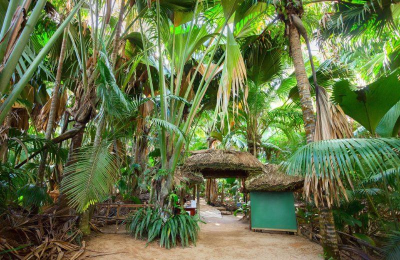 Seychelles Eid Al Adha Travel Packages From Dubai