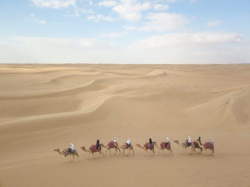 Camel Carvan in the Desert