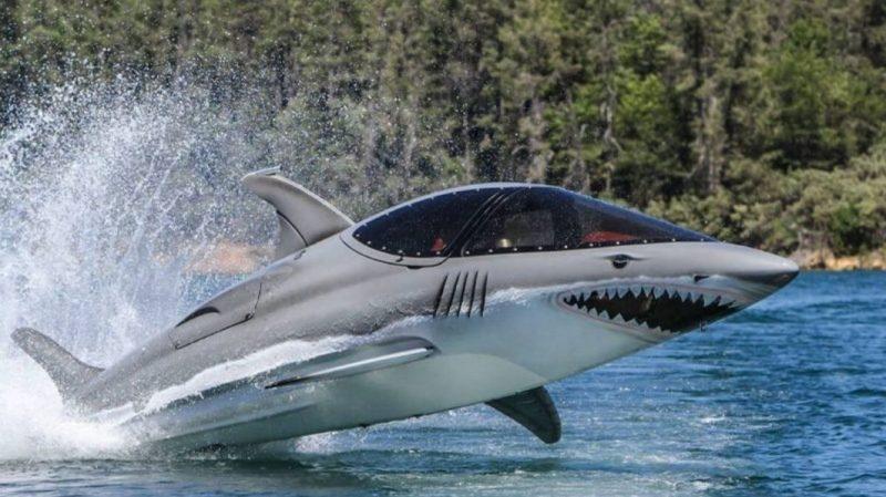 Seabreacher Ride