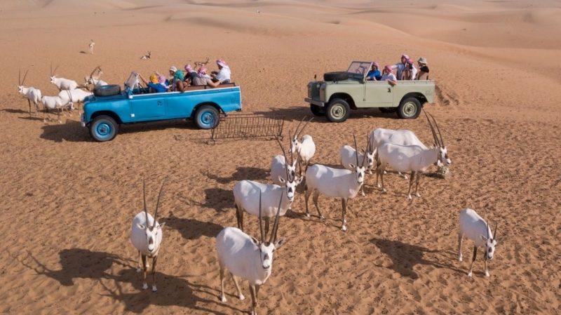 Heritage Wildlife Safari